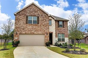 11 Pinestead Court, Tomball, TX 77375