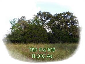TBD FM 109, Columbus TX 78934