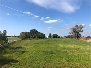 2934 Horse Trail Drive, Rosharon, TX 77583