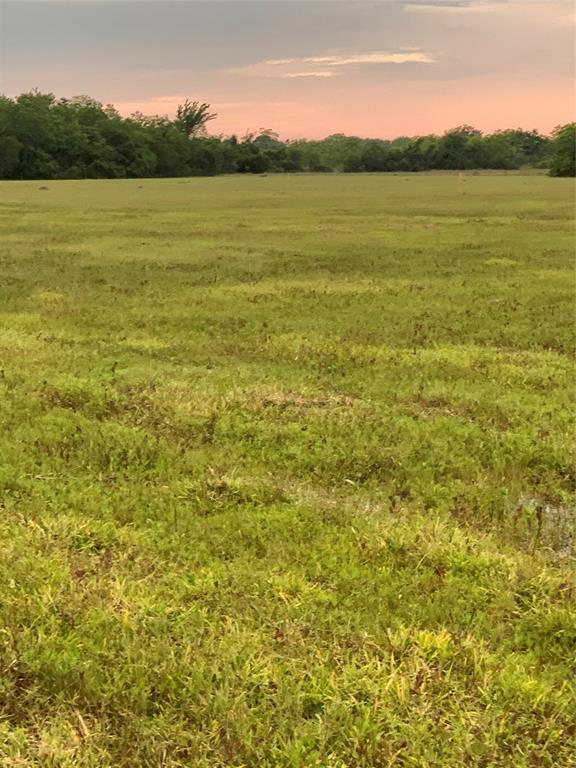 An amazing, private, 6 acre piece of land for your dream homestead.  Build your traditional single-family, a barndominium or use for agriculture.  This property has a driveway entrance off Vacek that leads to a secluded section of land with a pond.  The elevation of this land is premium since it is not in a flood zone!  This property is within the Santa Fe ISD boundaries but outside the city limits.  Electricity is available nearby but well and septic would need to be added. Deed restrictions prevent the use of this land for mobile homes.  An agriculture tax exemption has also been held on this land and is transferable to the new owner.