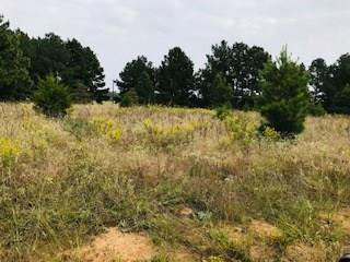 Looking for acreage? Come see this 30.336+/- acres with frontage on FM 1709 of unrestricted property. Has some scattered trees for shade. Great place in the country for recreation, residential or livestock. Water and electricity available from road.