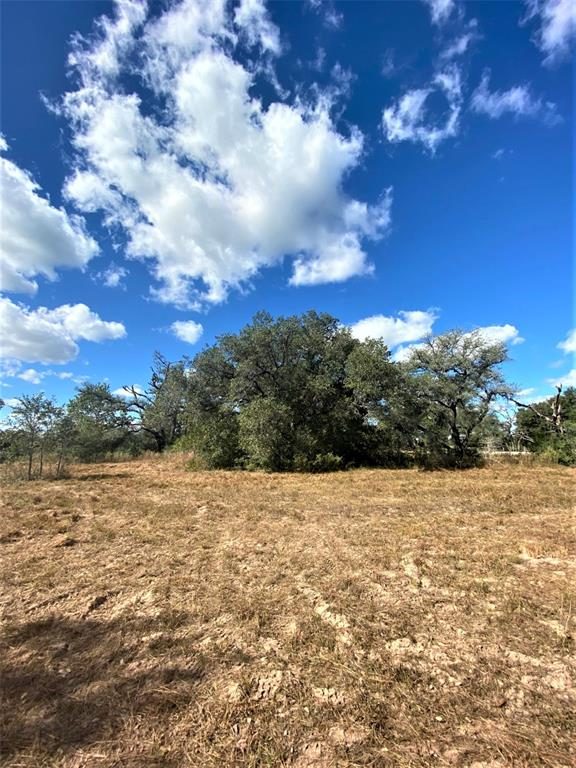 Fantastic opportunity to own small acreage in Lavaca County! Located on the corner of US 90 and CR 132 between Halletsville and Sublime offering paved road frontage on either side with tons of trees and wildlife, this parcel is waiting for you to make it your own with some selective clearing. Survey needed to determine actual acreage. Sandy loam. Nice pitch and roll to the terrain in this area! Such a pretty piece--call today for your opportunity see this parcel.
