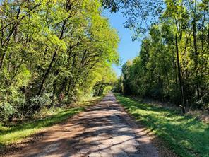 01TBD Royal Creek Road, Conroe, TX, 77303