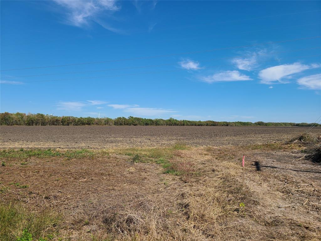 56 Acres of Prime Farmland in Matagorda County, Texas. Located 8 miles South of Bay City on FM 2668. Not in the Floodplain. Currently used as row crop but could be converted to pasture or homesite. Only $5,500 per acre.