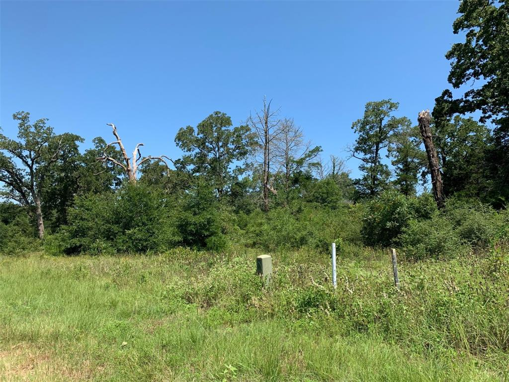 20+ beautiful acres waits for you to build your new home. Bring the horses and take life easy. Lots of mature trees and topography. Water and electricity onsite. Hunting allowed. 10 miles from Caldwell, ~ 20 minutes to Bryan/College Station; and ~90 miles to Houston and Austin. Truly a great location in the country that's convenient to shopping and TAMU and Rellis Campus but with the quiet escape to peaceful country life.