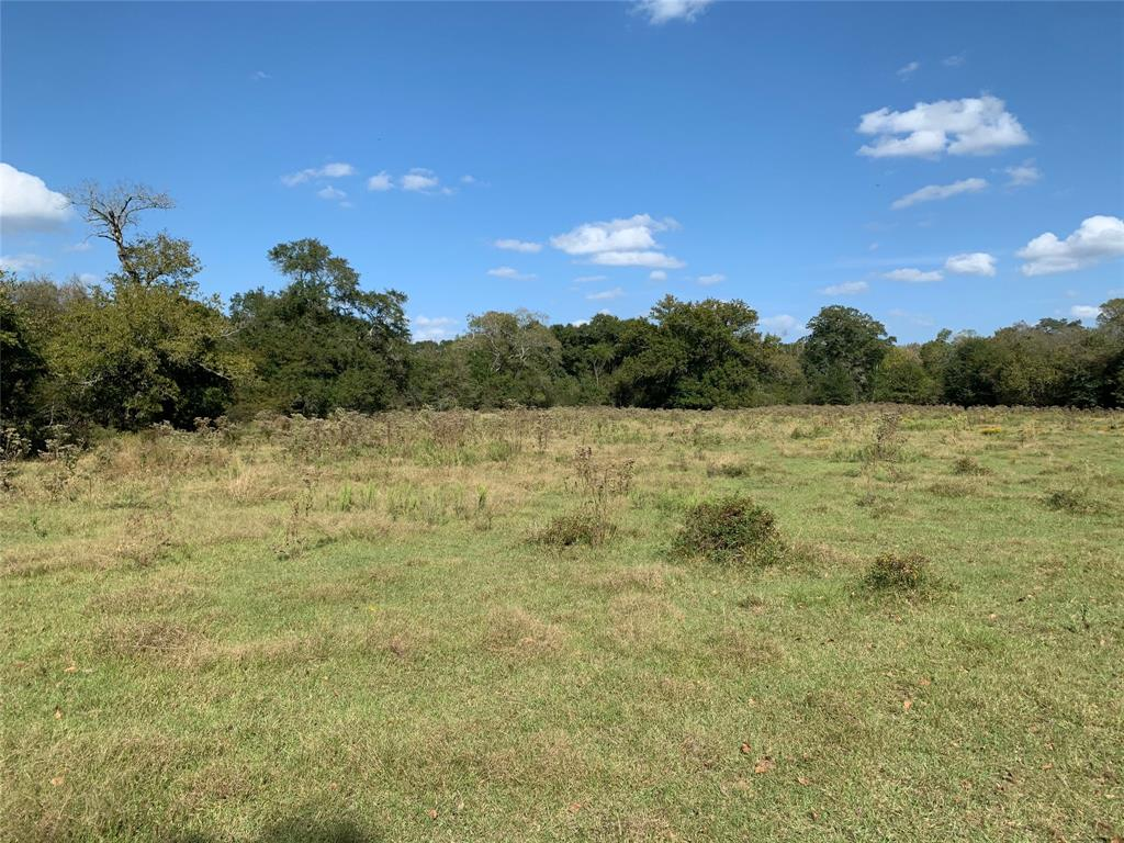TDB FM 80, Teague, Texas 75860, ,Country Homes/acreage,For Sale,FM 80,13139596