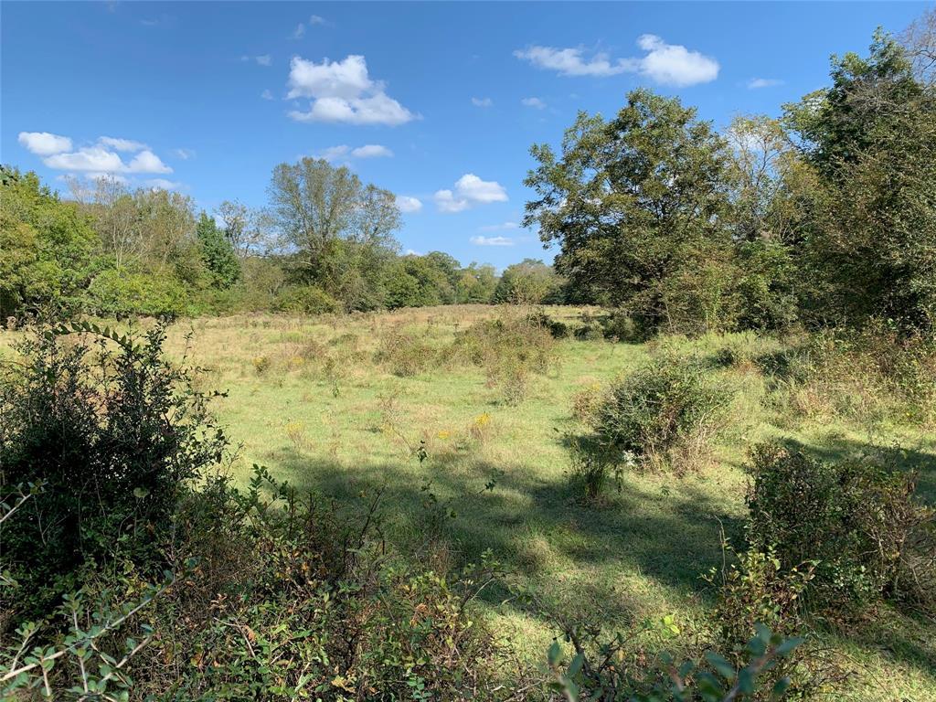 TDB FM 80, Teague, Texas 75860, ,Country Homes/acreage,For Sale,FM 80,13139596