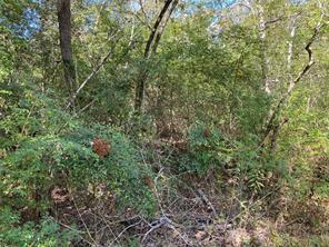 0 Arborgrove, Humble, TX, 77338