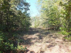 000 County Road 4227, New Summerfield, TX 75780