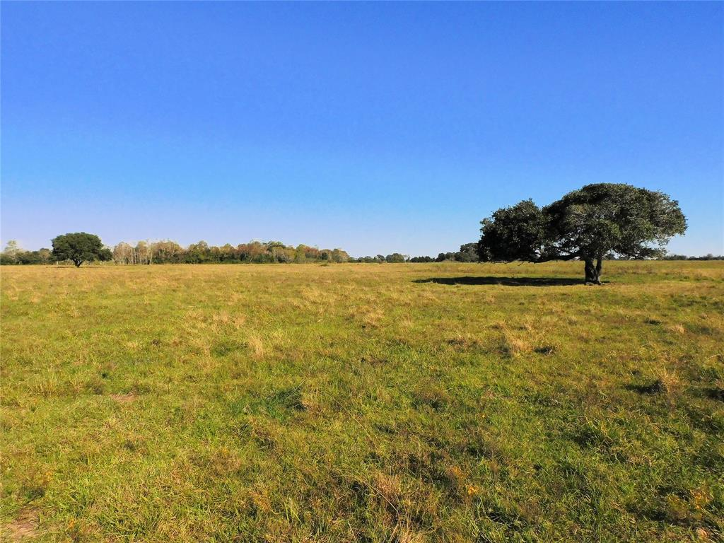 271*/- acres in Colorado County, TX. With its beautiful topography, excellent prairie land and great access this tract gives almost unlimited opportunity to create your perfect cattle ranch, recreational enjoyment or agriculture income producing property.  The broad prairie land provides phenomenal grazing for cattle operations and is well drained with native grasses.  Abundant water throughout the ranch comes from Duck Unlimited engineered lake and two smaller ponds for water fowl.  Great hunting for small game wildlife and for the upland bird hunter there are ample opportunities for quail and migratory birds. With easy access to I-10 this location provides for prime residential development or commercial business. The ranch recreational and agricultural production offer value to the cattleman, farmer and outdoor enthusiast.