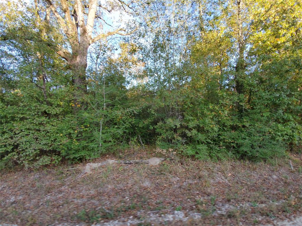 Wooded tract of land at the corner of Rockland Cemetery Road (CR 4035) and Lovelady Road (CR 4020).  This tract has frontage along two county roads. There is limited perimeter fencing. According to the seller, there is an easement across part of the property. There are no utilities currently on the property.