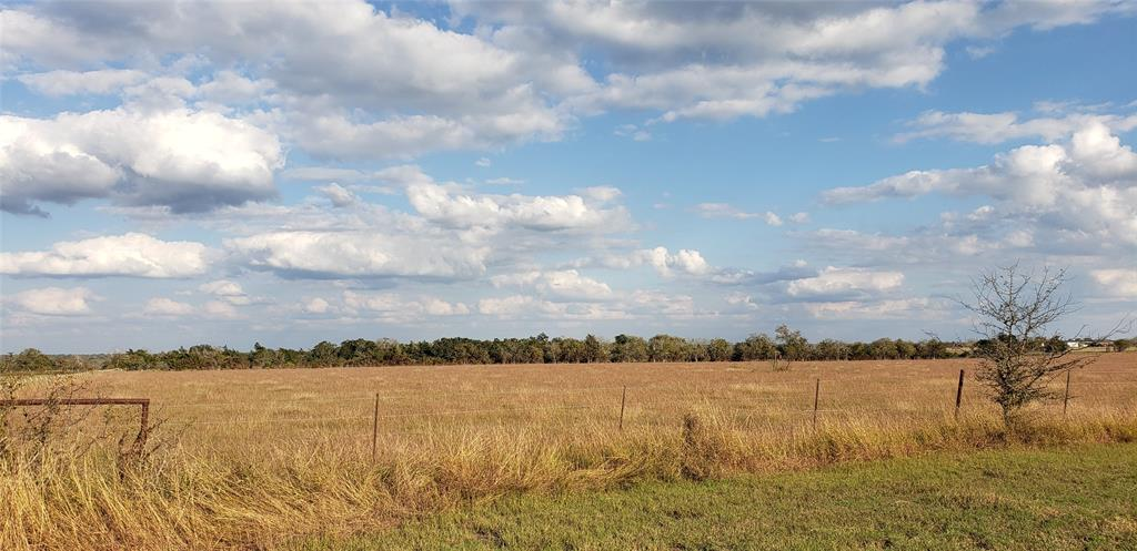 Currently used as a Hay meadow with improved grasses, this fully fenced tract would make a gorgeous and private place to build a home! These tracts will not last long at these prices! Beautiful Hill-Top views on this tract- 18 acres in Appelt's Hill! Adjoining acreage on 2 sides is also available for sale-up to 100.6 acres total.  2 sides of the property are surrounded by trees on the fence lines, but there are currently no other trees on the property. Trees can be planted, ponds can be dug, but hilltop views are almost impossible to create! Approx. 10 minutes to Hallettsville or 15 mins to Schulenburg, 1.5 hours to Houston/ Austin/San Antonio.