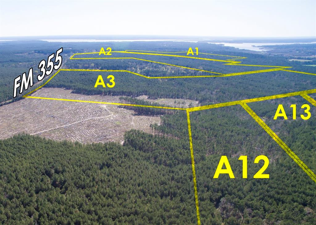 Tract A3-2, First time open market offering for historically owned industry forestland. Beautiful rolling topography with pines and hardwoods. Near Lake Livingston and public boat ramp. Great shape for utilization. Lake sites. Great access/frontage allows for many uses. (ie; recreation, hunting, high fence, RV park, leisure ranch, development, etc…) Water and Electric available.