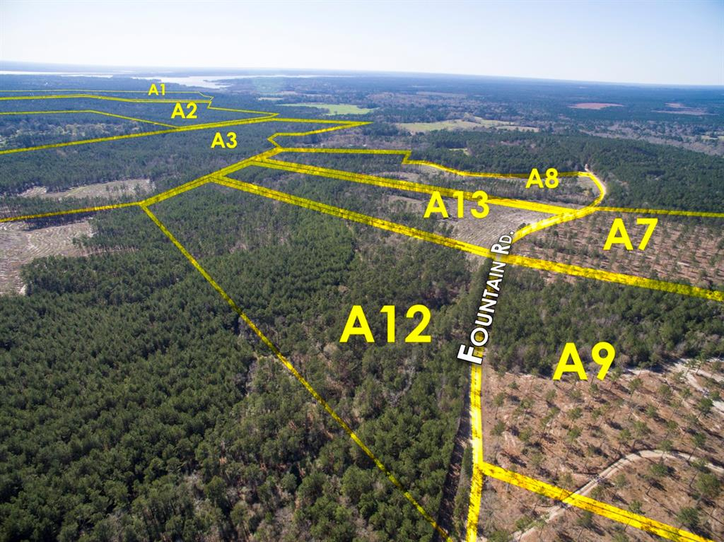 Tract A3-6, First time open market offering for historically owned industry forestland. Beautiful rolling topography with pines and hardwoods. Near Lake Livingston and public boat ramp. Great shape for utilization. Lake sites. Great access/frontage allows for many uses. (ie; recreation, hunting, high fence, RV park, leisure ranch, development, etc…) Water and Electric available.