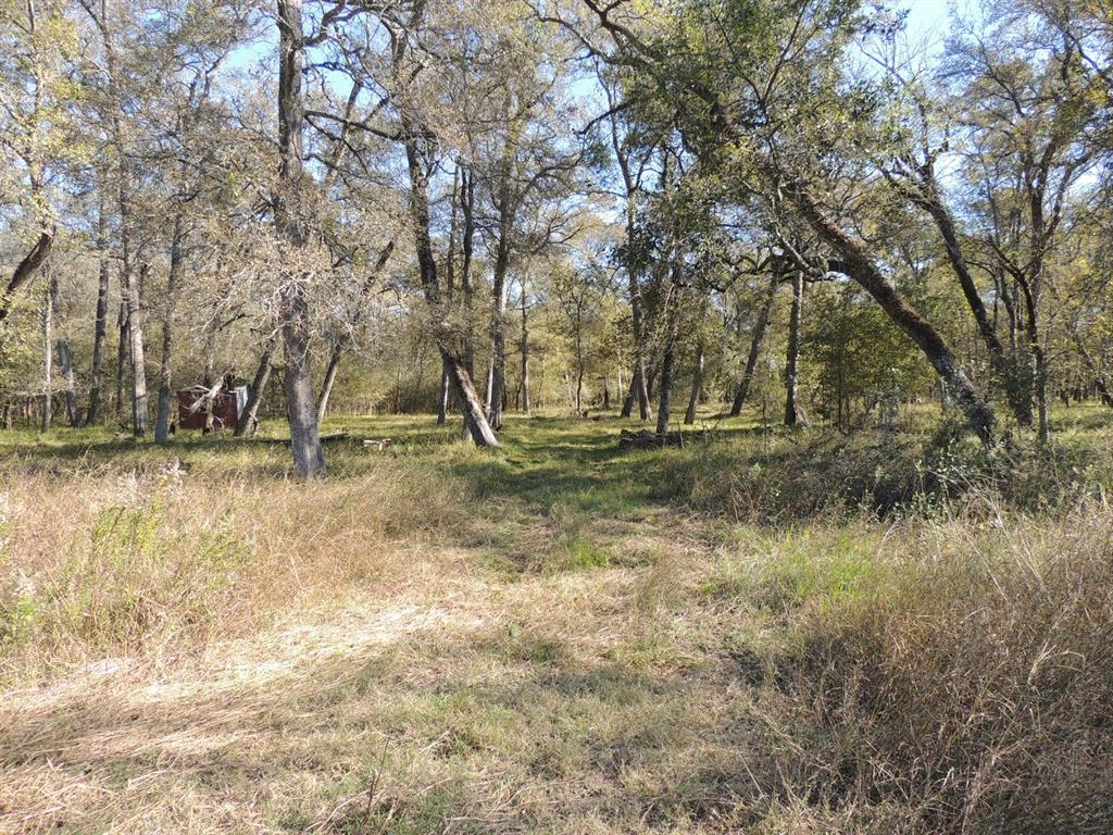Beautiful densely wooded rural home site. Huge live oaks, deer and other wildlife. Mild deed restrictions.
