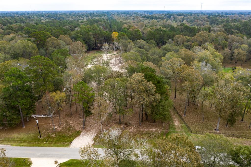 23905 Wild Forest Drive, New Caney, Texas 77357, ,Lots,For Sale,Wild Forest,36845193