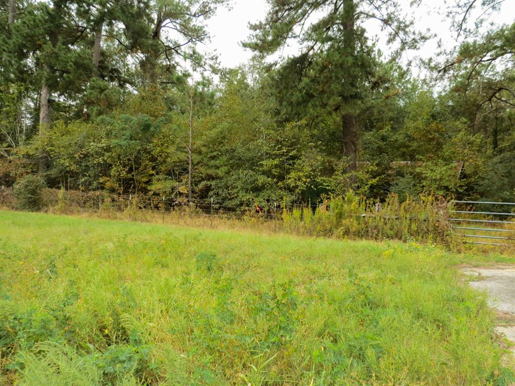1.74 acres next to Bells Camp Road. Lots of road frontage on Hwy 19, this property is unrestricted. Build what you want! Ideal for RV park, or commercial use, as Hwy 19 has 10,835 AADT (Annual Avg. Daily Traffic).