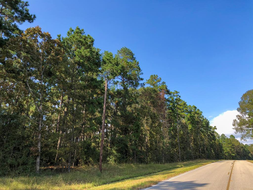 """Tract 5; The subjects are a part of Waterwood Subdivision, the remnants of which are now available for rural acreage tracts. Beautifully wooded in scattered hardwoods & pine trees over undulating terrain. Green belt preserved along Waterwood Parkway & low traffic area yet easily accessed and close to Lake Livingston. The cancellation of this section of Waterwood has been completed leaving several out tracts owned by other parties. The Property was platted as a subdivision in the early 1970s. The subdivision plats affecting the Property were cancelled according to several Commissioners' Orders Authorizing Canceling Subdivision Plats, Etc. Each Order references the recording information for the subdivision plats affected. The Orders specifically provide for access and utility easements to any lots owned by third parties """"over and across the right of way as shown on said plats which furnish the most direct route from and to Waterwood Parkway."""""""