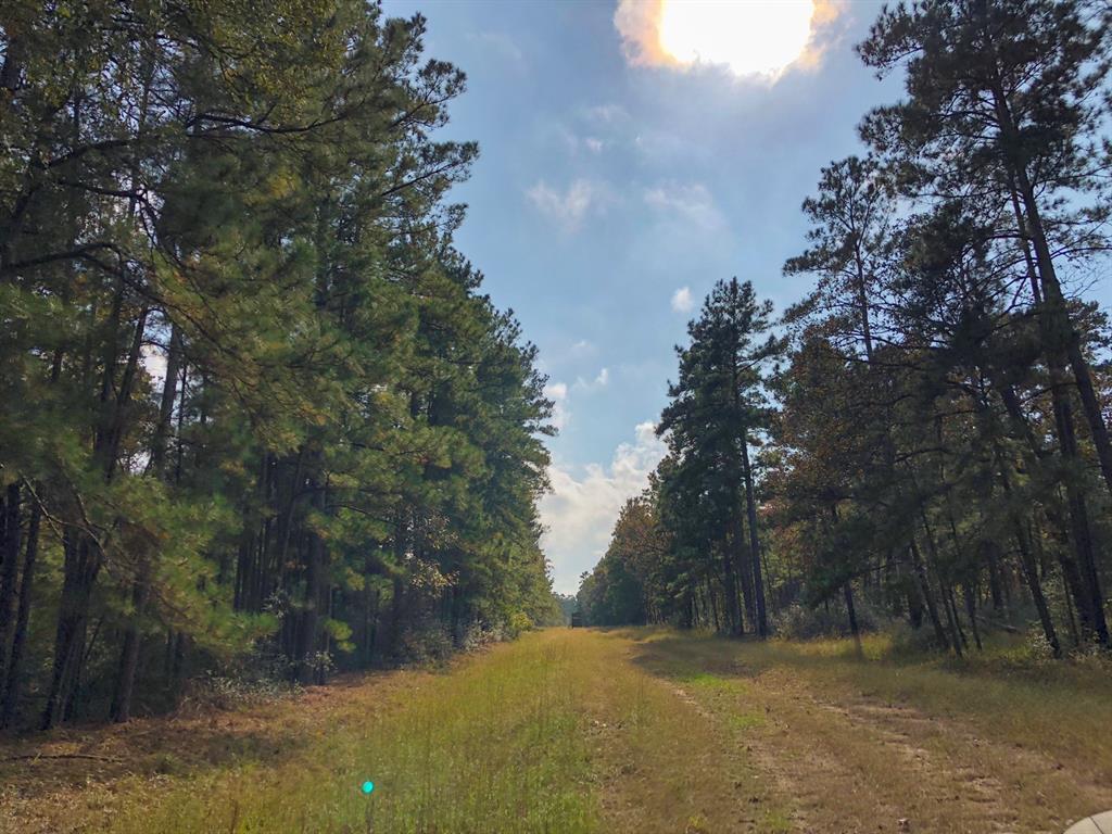 000000 Waterwood Parkway, Huntsville, Texas 77320, ,Country Homes/acreage,For Sale,Waterwood Parkway,70583758