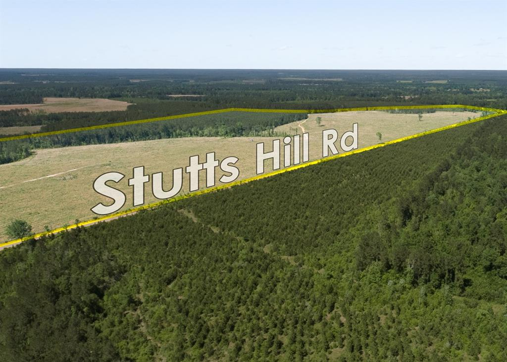 Highland Hills offers 11 to 17+ acre tracts suitable for homesite, investment, or recreation!  Eight tracts from 11-18 acres available in a first time open market offering. Mostly new pine plantation easily converted to pasture or a fresh start of trees to groom to your desire. Easy drive into Livingston or to the 59 corridor.
