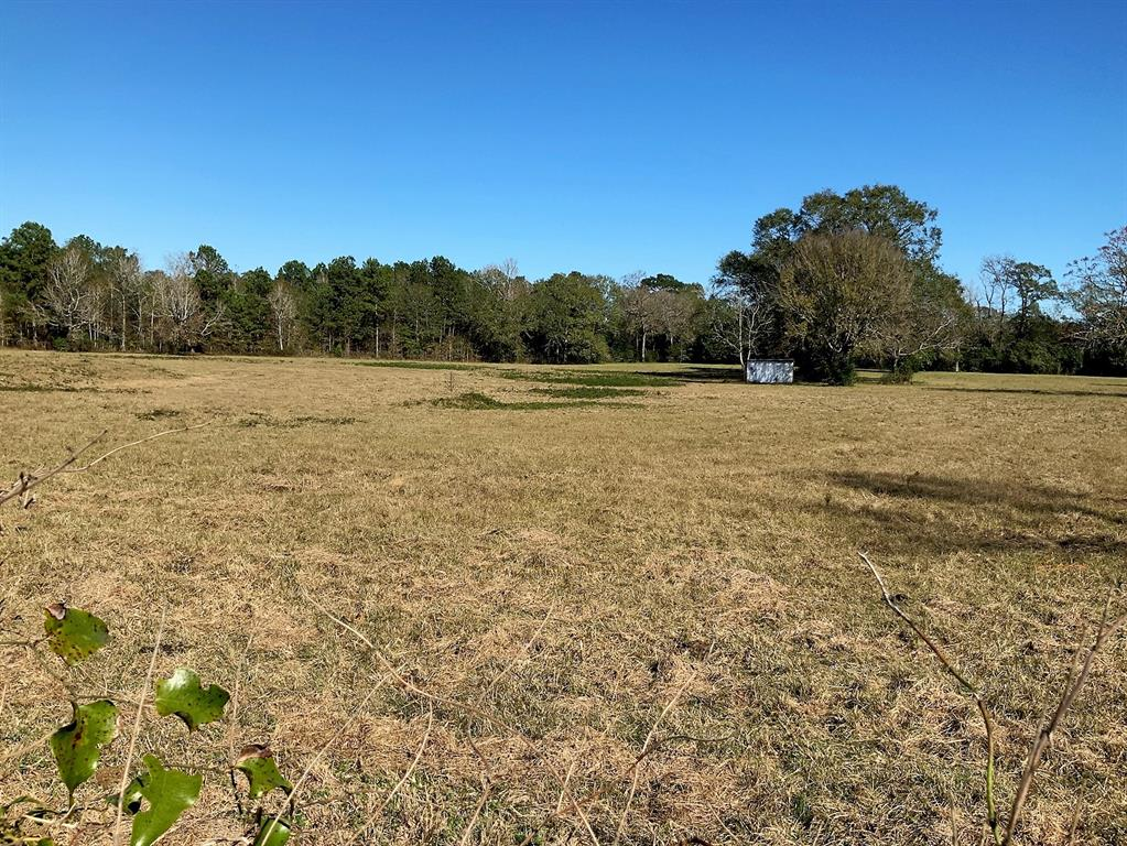 Located off FM 945 in the Evergreen area, this 8-acre parcel is a great location to build that dream home.  The parcel is fenced and been used for a pasture for horses.  There is a pond on the property and a small portable building that was used for a stall. The property is level with large towering hardwood.  The property has approximately 968 feet (CAD) road frontage.