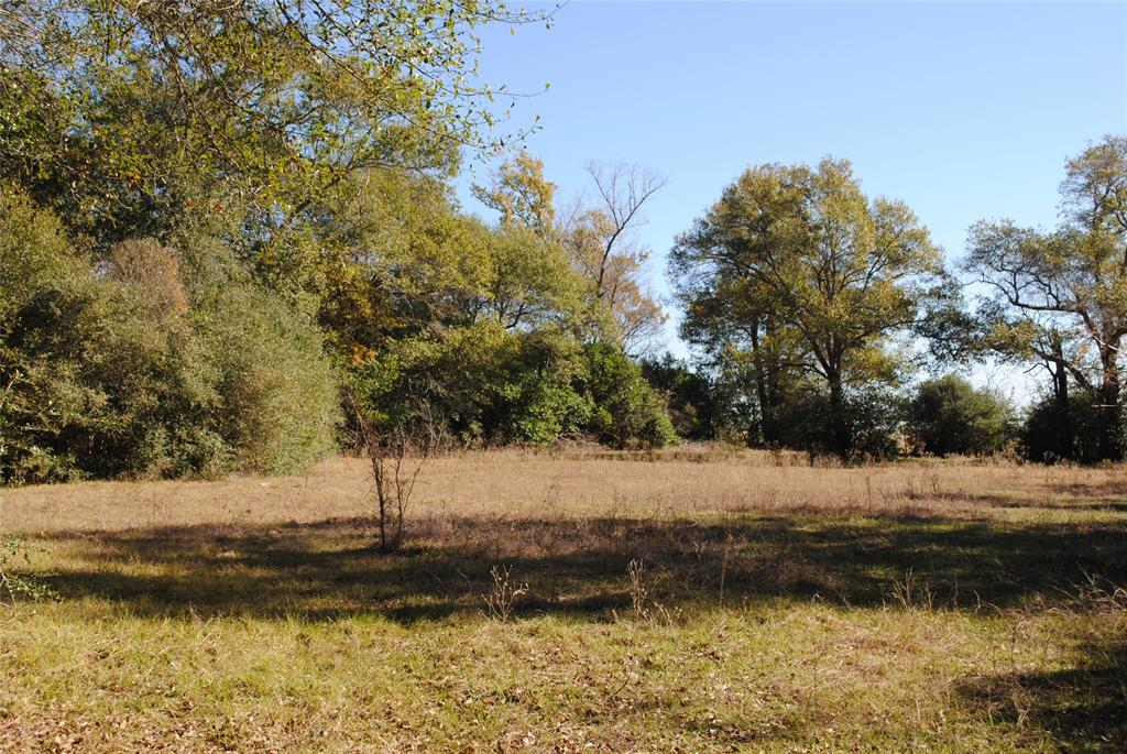 Beautiful 18.05 +/- acres located in the rolling hills of Washington County. This tract features huge granddaddy oaks, rolling topography and privacy. Perfect location to build your dream home nestled among the oaks. Ag exemption is in place.