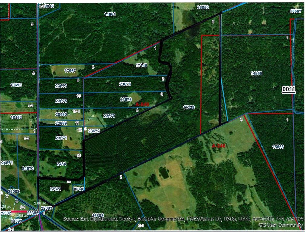 A great recreational tract of land located in Eastern Houston County. This property consists of 222 +/- acres with majority of it in Pine Timber also has highway frontage on FM 232 with an easement entrance from State Highway 287 South along with a great sized stocked lake the owner reports. On the property is an old home that would make a great weekend or hunting cabin. Along with the lake you have White Rock Creek running through the property which is lined with mature Oaks and other hardwoods. Some of the pine has been thinned out in the last few years with the rest being ready to thin now. There is a great potential in timber sales on this property in the coming years Along with some of the best deer and hog hunting Houston County has to offer. Call us to see this property today!