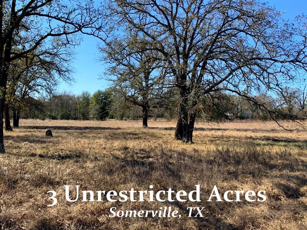 Great new listing - Unrestricted property with established trees and lots of privacy.  This 3-acre flag lot tucks the future homesite area back off the main road.  Attractive configuration.  New culvert and driveway entry at FM1361.  Nice flat tract with a slight roll.  Perimeter fence in place.