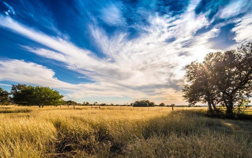 Expansive, panoramic views of San Marcos and Seguin, backs to greenbelt and upper elevation topography suitable for a premier homesite near a mature live oak tree. Agriculture exempt, currently under hay production. Secure gated access, large neighboring tracts. Fish in your probated stocked pond. Pastures for grazing cattle or horses. Plenty of space for barns and a guest casita. Short walk to the local brewery. Simple country living near amenities. Additional acreage available.