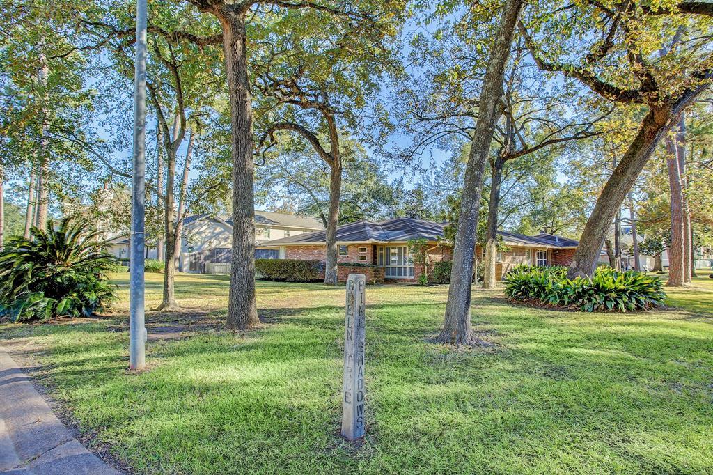 5313 Green Tree Road, Houston, TX 77056