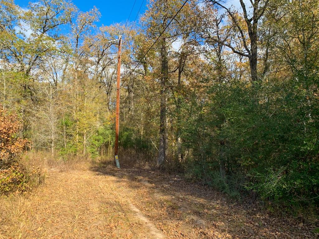 Wooded 1.55 acres 15 minutes from Livingston and less than 2 miles to public boat ramp on Lake Livingston. Electricity to property and water available by short extension. Good investment, possible homesite, or get-away.