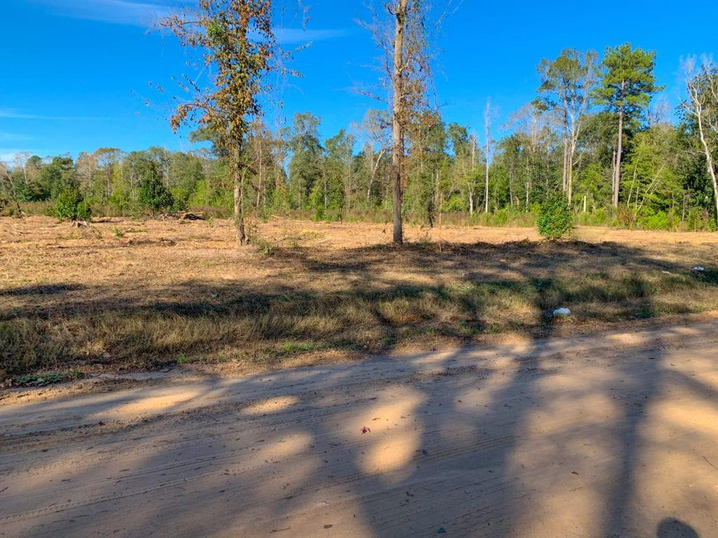 Great location for quiet country living nestled in the middle of the Big Thicket area of East Texas. Mostly cleared acreage with great road frontage. Electricity and water available. Good investment, excellent homesite.