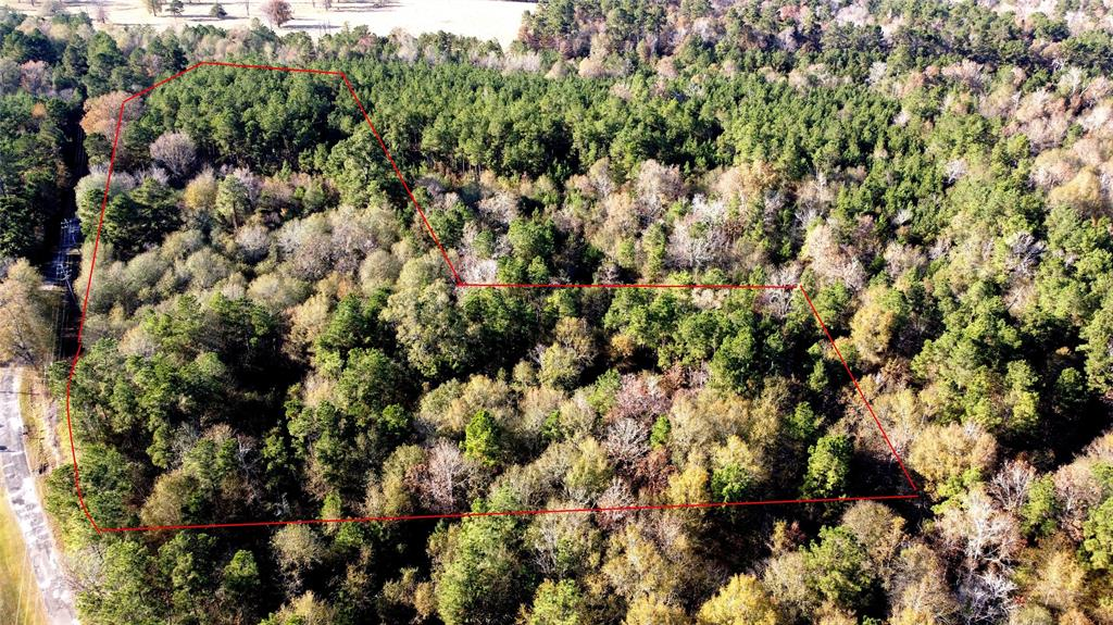 15.7 Acres of Wooded Land which is fairly level  Portions of the property have tall mature trees and portions of regrowth vegetation/trees after foresting appearing to be 10+ years old. Lots of frontage on CR 2172 and only short distance to FM 787 and close proximity to Cleveland/North Houston.  Large Forested tracts behind this property could make for great hunting.  There are 2 or more abandoned structures on this property.  They are in a near state of collapse and need to be torn down (do not enter those structures).  There is a powerline easement across a portion of the front of this property near CR 2172.
