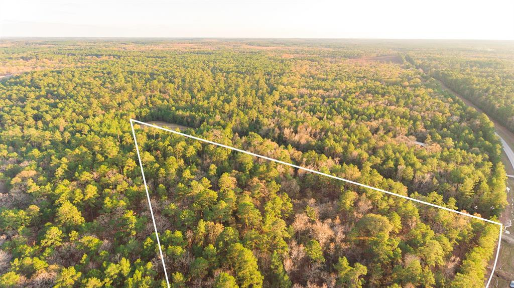 Great location for these 4 acres, in San Jacinto County,  sandy loam soil, heavily wooded with Pine trees, fronting FM 980.