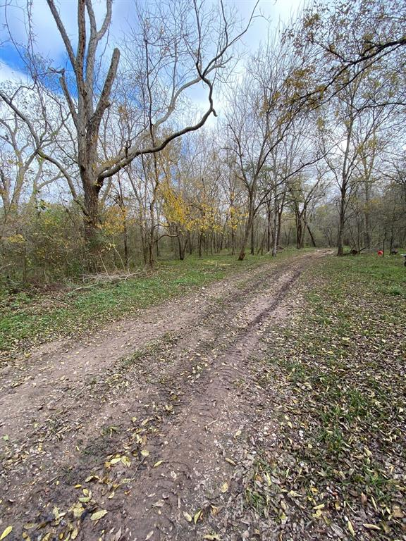 Great small acreage piece with trees and abundant wild life. Out of the way area on located on dead end road.  Build a home or make this a great weekend get away! Come and take a look