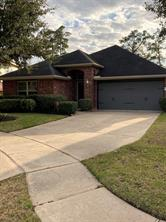 7118 Dewberry Shores Lane Lane, Humble, TX 77396