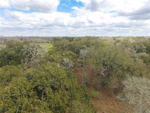 0 Ashwood Road Road, Van Vleck, TX 77482