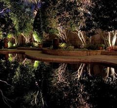 15106 Coral Oak