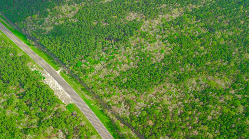 This is a 7 acre tract that is part of a larger 41.36 acre property.  Versatile property situated on 41.36 acres in Point Blank. Located in San Jacinto County directly off of US 190W, just minutes from the Trinity River/Lake Livingston, this property is in a prime location for commercial or residential use. Property boasts road-frontage on US 190W, making it perfect for an RV or mobile home park.