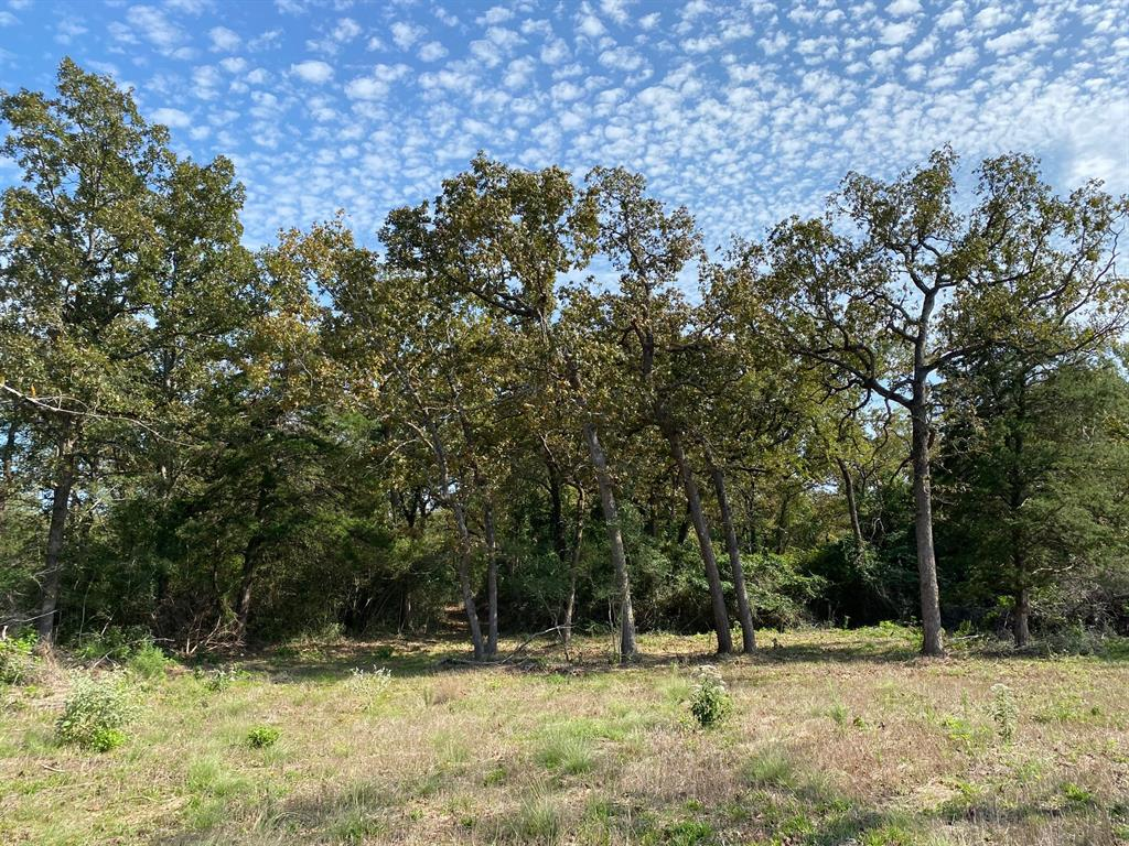 11 acres on county road with all utilities available.  Nice recreation tract or residential tract.  Pretty woods with scattered openings.