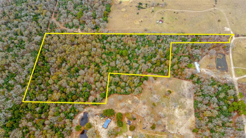 Situated in the low-tax area of Madison county, this +/- 20 acre tract is unrestricted and ready for you to make your own. Whether you're looking to build your dream home, a leisure ranch, or even a weekend getaway, the potential for this property is endless. Enjoy the privacy of your densely wooded acreage without sacrificing ease of access! Located just a short drive from the Trinity River this property is priced to sell and won't last long! Schedule a showing today.