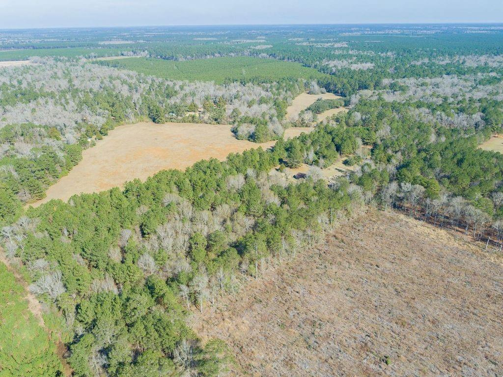 Beautiful mixed woods of maturing pines, large hardwoods and excellent soils.  Perfect for hunting and/or an awesome location to build your dream home. A very quiet area. This 9+ acres backs up to foresters which is over 33 acres.
