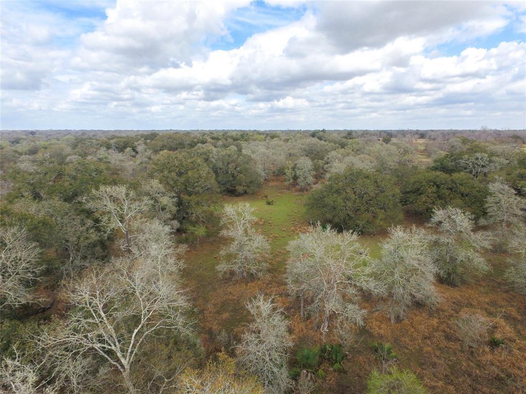 Come take a look at your long awaited dream hunting property or country homesite!! Fully wooded with towering  live oaks and elms. Property is teeming with hogs and deer and backs up to the historic Runnels-Piece ranch! Just minutes from rapidly growing Bay City and Van Vleck. This property has been untouched for ages and is just waiting for the next owner to put their TLC into this tract to make it their own. Call for a private showing!