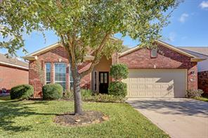 13007 Meadow Springs Drive, Pearland, TX 77584