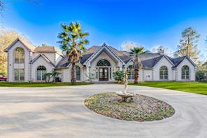 209 Forest Wind Circle, Montgomery, TX 77316