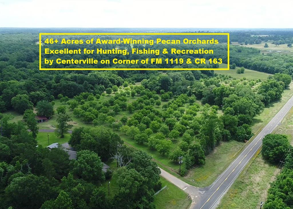 46+ Acres of Award-Winning Pecan Orchards Excellent for Hunting, Fishing & Recreation by Centerville on SE corner of FM 1119 & CR 163 (also known as 1480). Property has 1431 feet FM 1119 road frontage, 1750 feet County Road 163 frontage, 4 irrigated pecan orchards with ~260 pecan trees, 1240 sqft metal barn with attached cover, multiple creeks, a small foot bridge & abundant wildlife perfect for hunting & fishing. See diagrams for Pecan Orchards/Irrigation System & Revised Pecan Farm Equipment List in docs. Ag exemption for wildlife & orchards! Room to add more trees & homes! Located just 3 miles East of I-45 provides for easy commute to Houston & Dallas. 50 Miles North of Huntsville. 60 Miles SE of College Station Easterwood Airport. Drone video was made of multiple adjacent properties for sale. Homes located on property across CR 163 were sold after making the video! There are no homes currently on property. No known restrictions! No survey!