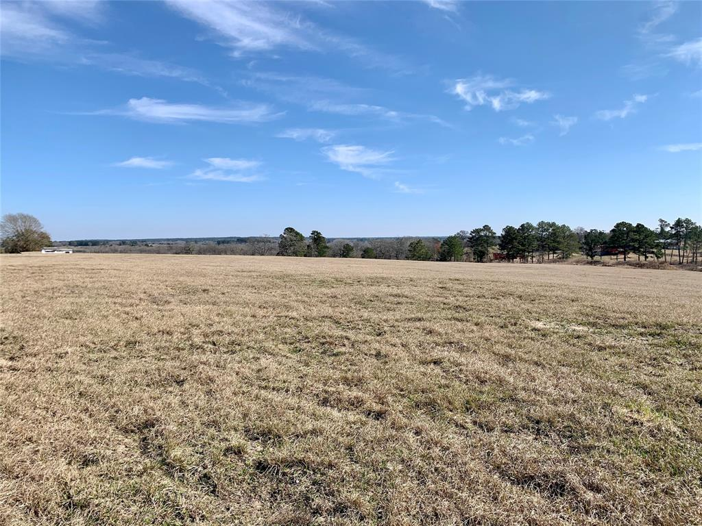 Long distance views, country living, and a blank canvas awaits... 12.5+/- acres situated in central Grimes County minutes from the National Forest with easy access to The Woodlands and College Station. The property offers paved access, sandy soil, rolling terrain and wonderful views.