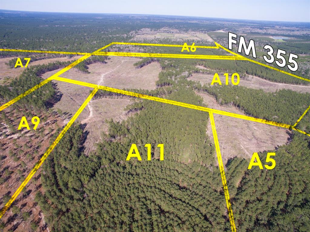 Tract A10-1, First time open market offering for historically owned industry forestland. Beautiful rolling topography with pines and hardwoods. Near Lake Livingston and public boat ramp. Great shape for utilization. Lake sites. Great access/frontage allows for many uses. (ie; recreation, hunting, high fence, RV park, leisure ranch, development, etc…) Water and Electric available.