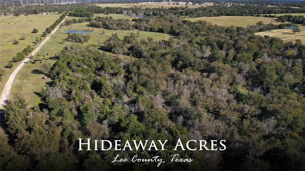 Hideaway Acres: This heavily wooded 37.34 acre tract with good elevation changes gives you the opportunity to develop your very own country getaway. With easy access off FM 448 just outside of Winchester and still within convenient proximity to Smithville and Giddings this property provides all that you are looking for in a country property.