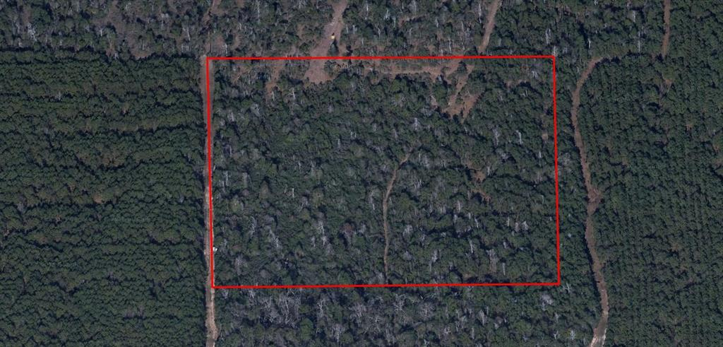 Square shaped 10 acre wooded tract, South of Old Hwy 105, West of Daw Collins Rd, East of Timber Switch Rd. Property is currently landlocked and one would need to work out an access easement.